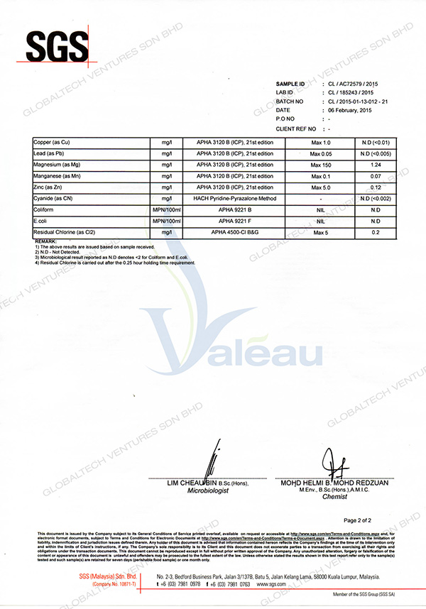 globaltech-valea-alcali-mineral-activateur-test-report-SGS-before2